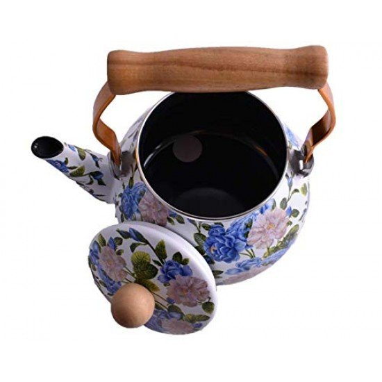 Colored Kettle with Wooden Handle